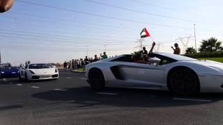 Dubai parade 2014 for luxury & vintage cars