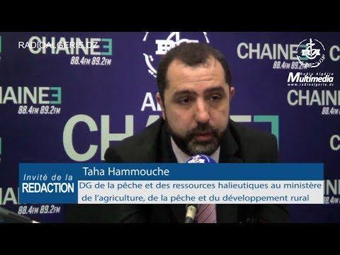 Taha Hammouche DG de la pêche et des ressources halieutiques