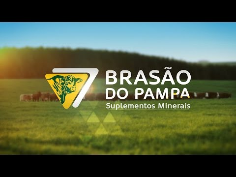 BRASÃO DO PAMPA - Institucional
