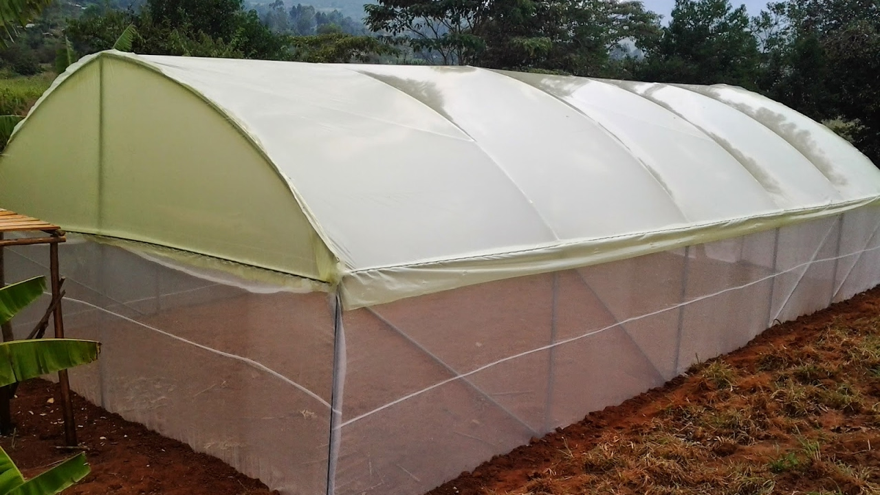 How to make an affordable greenhouse in kenya wooden and metallic greenhouses 0723053026