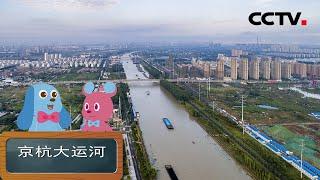 《道哥和摩尔》京杭大运河:世界上里程最长、工程最大的古代运河 | CCTV少儿