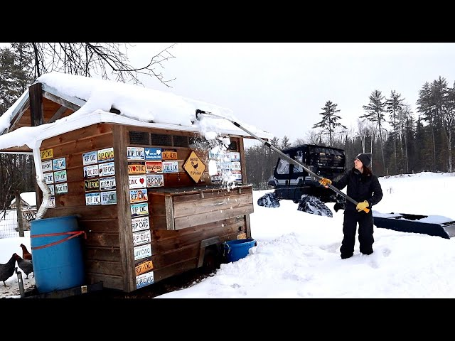 WINTER Day in the LIFE Living on a HOMESTEAD in the NORTH | Not What we EXPECTED!!
