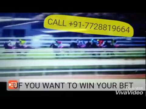 Dubai Qatar UK USA Australia INDIA HORSE RACE BETTING / HOW TO WIN / 1 2 3  4 5 6