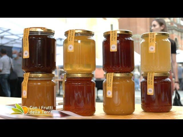 Puntata del 10/10/21 – 4° parte –  Annata nera per il miele