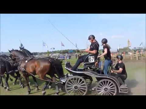 Horse Driving Kronenberg 2018: Ijsbrand Chardon (NED)