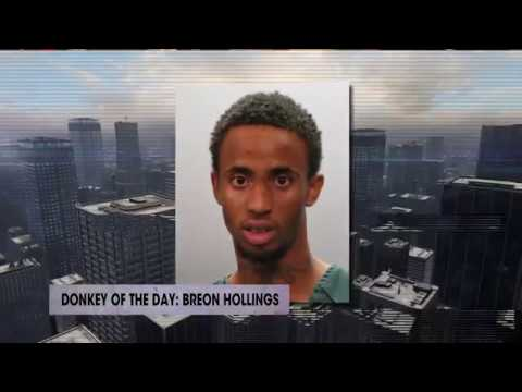 Breon Hollings | Donkey Of The Day