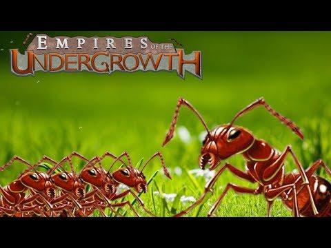 Empire of the undergrowth : พลทหาร มด สู้ฟัด [Ringingz] ไทย TH