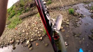 2015 Tuscarawas River Fishing Adventures (Cut I)