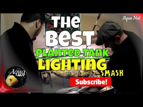 Giesemann T5 Lighting for Planted Tanks  Super Flora, Tropic + PAR Testing 🌿 Mega Build