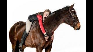 MEET MY NEW HORSE!