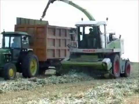 Harvesting in Kibbutz Yavne