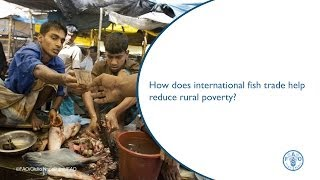 How does international fish trade help reduce rural poverty?