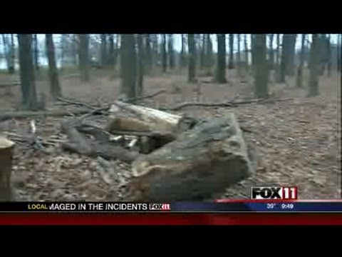 Eagle Scout project destroyed