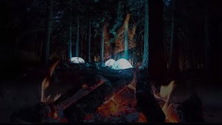 10 Hours Sound of Camping Fire and Forest at Night - Nature Sounds for Sleeping-Relaxing-Meditation