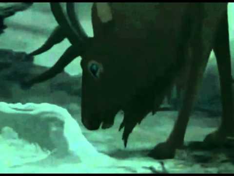 Oceansize - Ornament/The Last Wrongs - Fantasia 2000 ... Fantasia 2000 Firebird