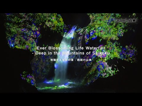 Ever Blossoming Life Waterfall - Deep in the Mountains of Shikoku / 増殖する生命の滝 - 四国の山奥
