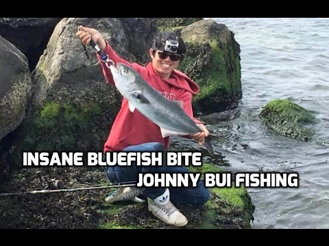 Insane Bluefish Bite, Spring Bluefish, NJ 4/25/16