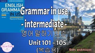 Grammar in Use Intermediate  영…