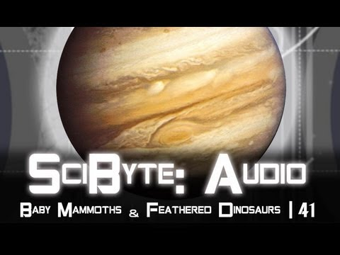Baby Mammoths & Feathered Dinosaurs | SciByte 41