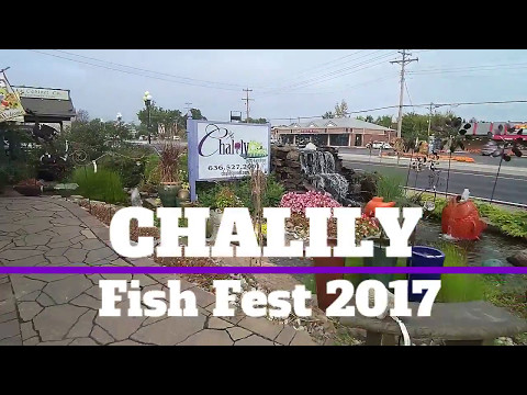 Fish Fest 2017