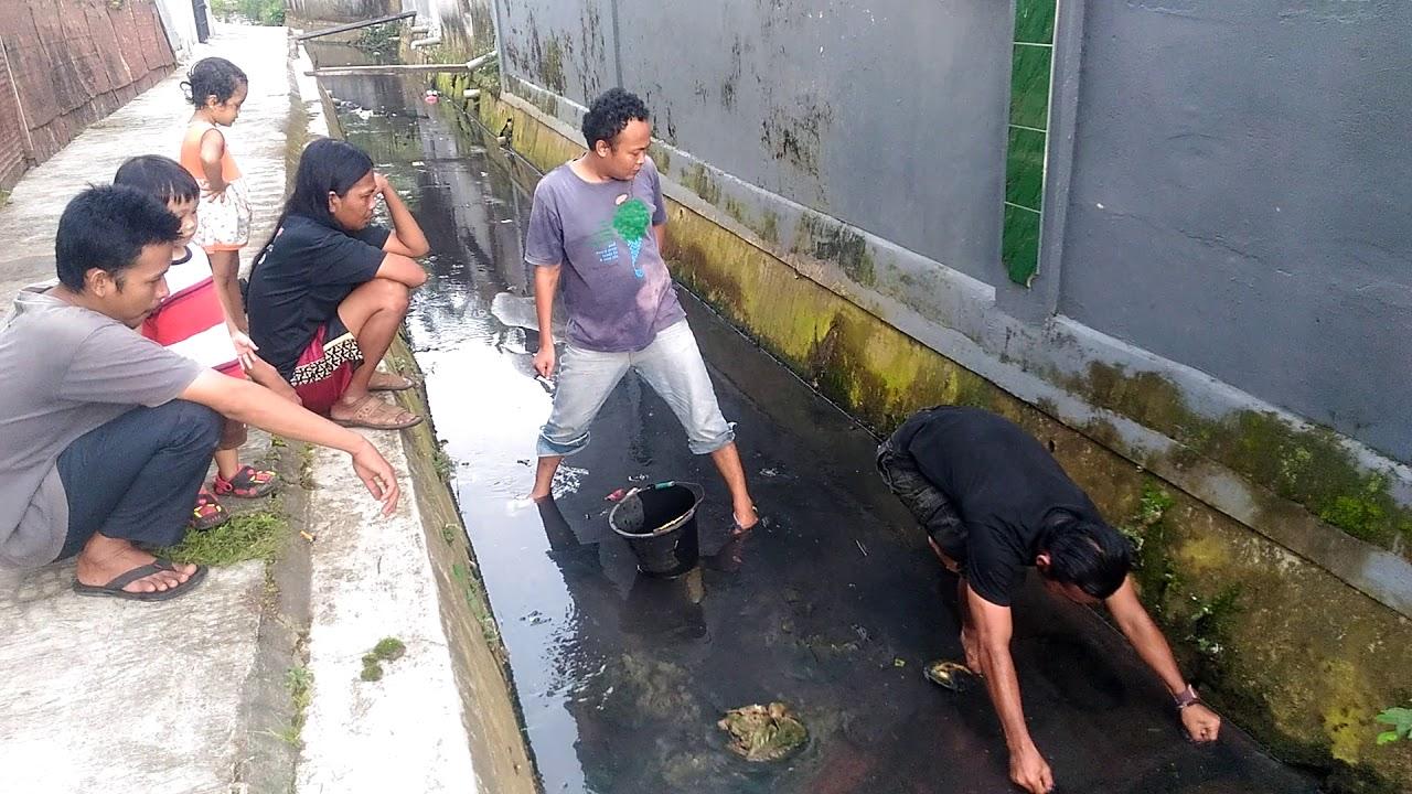 Mencari Cacing Sutera Bersama Abeng Dan Kawan2 Youtube