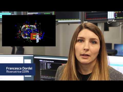 LHC Italia - LHCb, Francesca Dordei