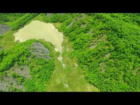 台灣西南的生態綠州。龍崎牛埔到馬頭山 201808