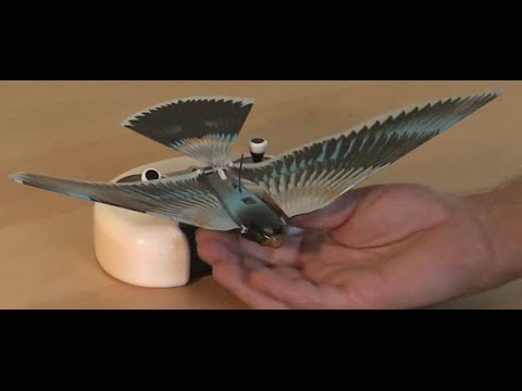 Watch the new Avitron v2.0 Bionic Remote Controlled Bird fly