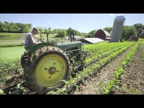 Book Trailer: One Small Farm