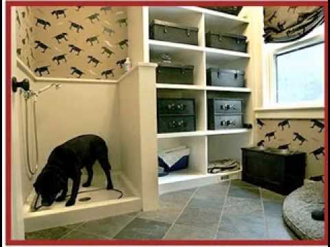 Awesome Dog room decorating ideas - YouTube