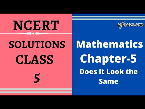 NCERT Solutions Class 5 Maths Chapter- 5 Does it Look The Same?