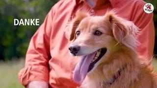 VIER PFOTEN Gründer Heli Dungler zum 30-jährigen Jubiläum seiner Tierschutzorganisation thumbnail