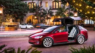 AMAZING.. Tesla Model X Interior
