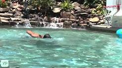 The Batts Company | Swimming Pools | Jacksonville Beach, FL