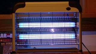 NEW! - Aspectek Indoor Bug Zapper Test & Review - Best Electronic Insect Killer?