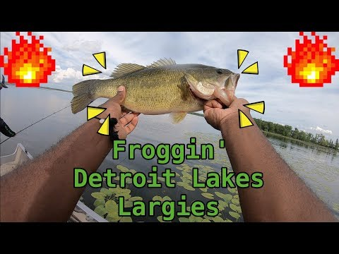 Froggin' Largies In Detroit Lakes