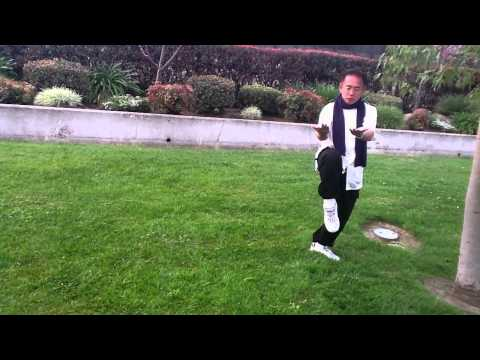Taichi Form 24 Step by Step Instruction
