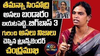 తమన్నా బండారం బయటపెట్టిన | Transgender Chandramukhi Comments On Tamanna Simhadri | #BiggBossTelugu3