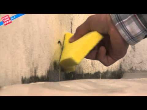 Ferretotal c mo eliminar moho en las paredes youtube - Como quitar moho de la pared ...