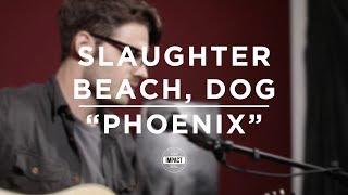 Slaughter Beach, Dog - Phoenix (Live @ WDBM)