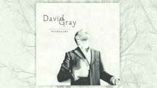 David Gray - Foundling (Official Audio)