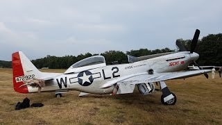 Flight in P51 Scat VII with Go Pro Cockpit View,  Low Pass and Roll
