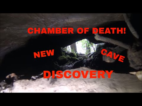 "New Cave Discovery: ""The Bear Death Pit"""