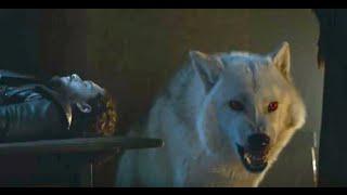 Game of Thrones Season 6: Final Trailer - Ghost  (HBO)