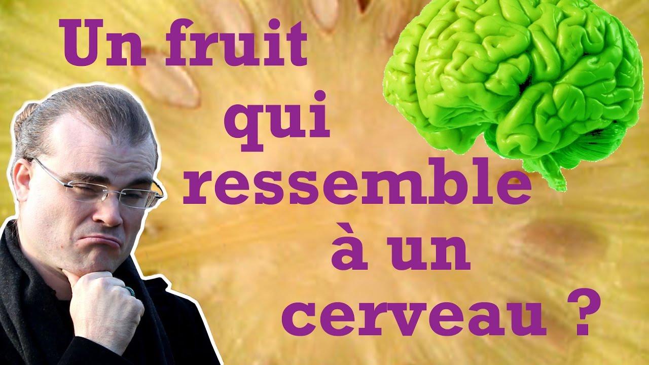 un arbre- ajonc - 2 novembre bravo Martine  Maxresdefault