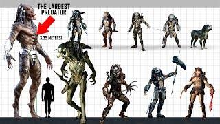 YAUTJA (Predator) Size Comparison
