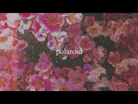 Polaroid - Alisson Shore, kiyo, no$ia (Official Audio)