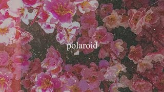 Polaroid - Alisson Shore, kiyo, noia (Official Audio)