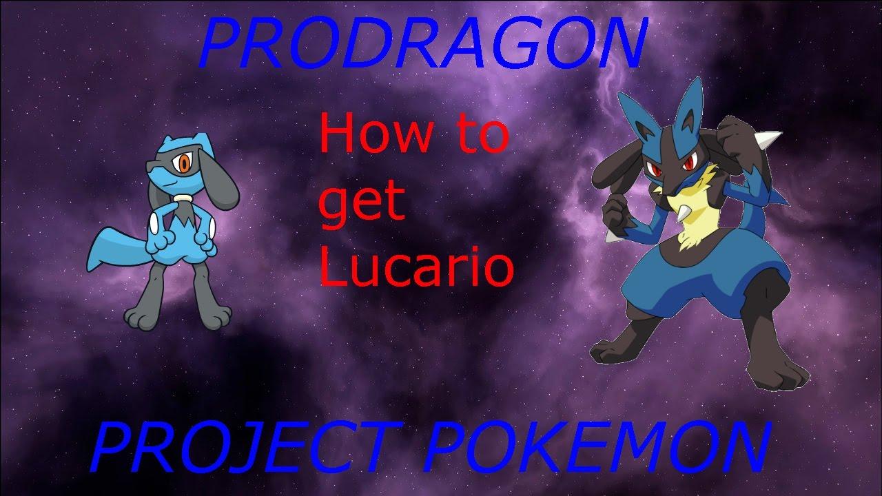 pokemon riolu cheat code