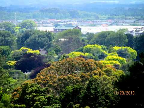 Palmerston North, NZ, views from the city
